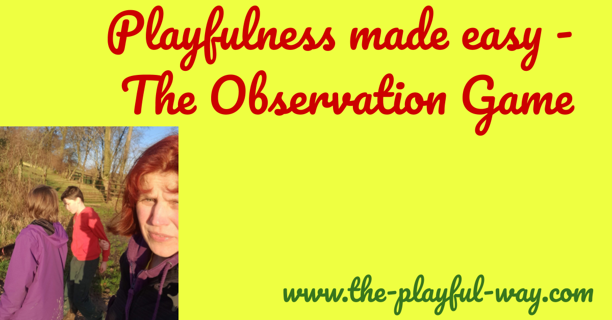 cover picture - the observation game